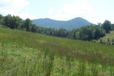 Sunset Mountain Estates Residential Lots & Land For Sale: N/A Sawyer Cove