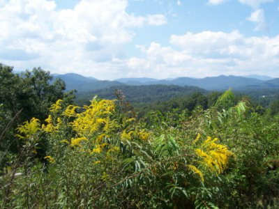 Sunset Mountain Estates Residential Lots & Land For Sale: 00 Deacons Way