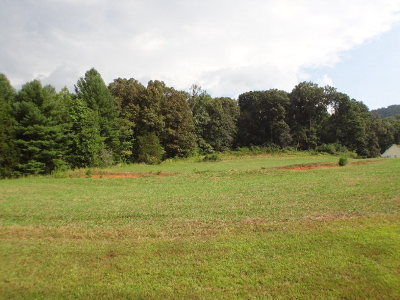 Franklin, Otto Residential Lots & Land For Sale: Dobson Rd