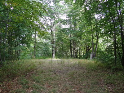 Residential Lots & Land Sold: 00 Angel Knob Road