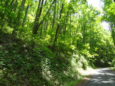 Watauga Vista Residential Lots & Land For Sale: 00 Skyland Drive