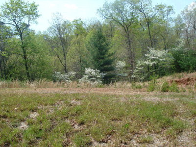 Otto Residential Lots & Land For Sale: 00 Windy Ridge Road