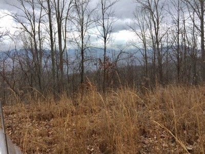 Residential Lots & Land For Sale: Lot12,13 Carver Mountain Estate