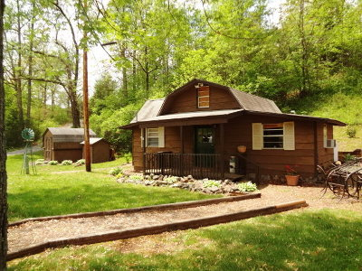 Macon County Single Family Home For Sale: 542 Mica City Road