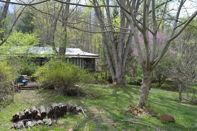 Macon County Single Family Home For Sale: 435 Newman Road