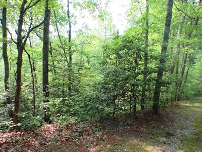 Franklin, Otto Residential Lots & Land For Sale: 00 Sapphire Lane