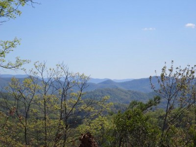 Franklin Residential Lots & Land For Sale: 00 Leatherman Gap Rd