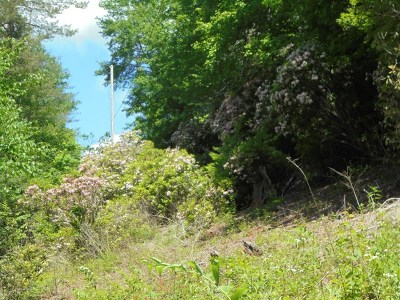 Franklin, Otto Residential Lots & Land For Sale: 00 Little Ellijay Rd.