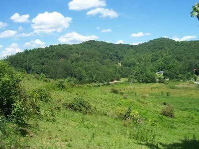 Franklin, Otto Residential Lots & Land For Sale: 4956 Upper Burningtown Road