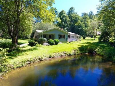 Franklin Single Family Home For Sale: 279 Wilkes Branch Lane