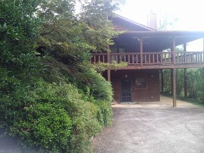 Single Family Home For Sale: 345 Kivi Road