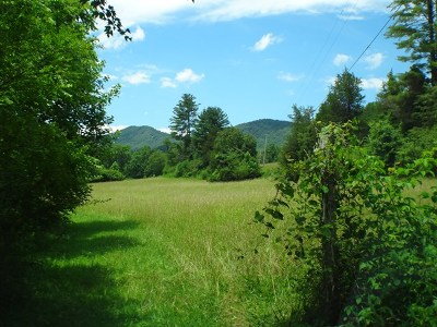 Franklin, Otto Residential Lots & Land For Sale: 00 Shope Rd