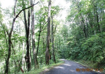 Watauga Vista Residential Lots & Land For Sale: Lot 188 Cardinal Ln