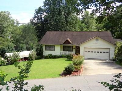 Franklin Single Family Home For Sale: 390 Trimont Trail