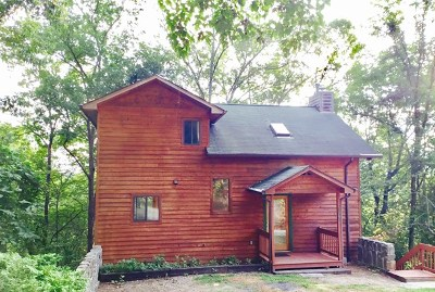 Swain County Single Family Home For Sale: 155 Eagles Nest