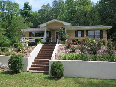Single Family Home For Sale: 101 Little Mountain Rd.