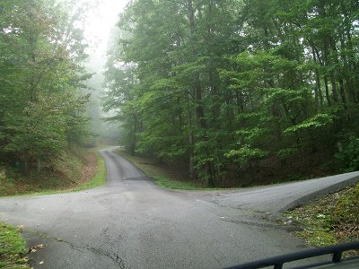 Franklin, Otto Residential Lots & Land For Sale: Lot 1b Maclor Forest Heights Rd