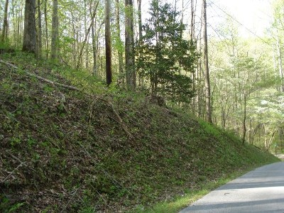 Watauga Vista Residential Lots & Land For Sale: Lot 107 Brook Ln