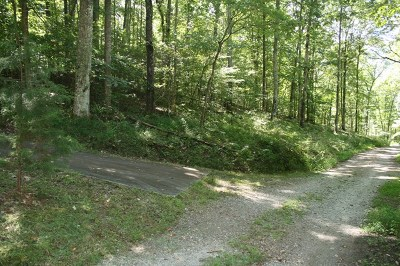 Franklin, Otto Residential Lots & Land For Sale: 000 Byrd Farm Road