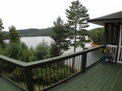 Topton Single Family Home For Sale: 273 Nantahala Cove Rd