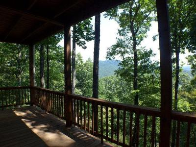 Single Family Home For Sale: 229 Skyline Drive