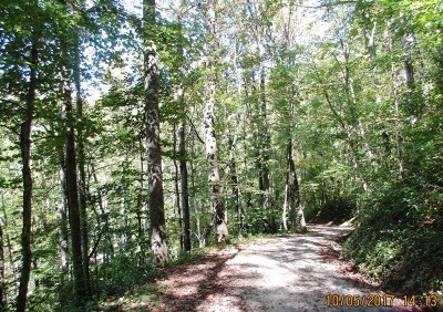 Watauga Vista Residential Lots & Land For Sale: Lot 193b Cardinal Ln