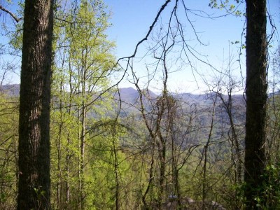 Franklin, Otto Residential Lots & Land For Sale: Whisper Mountain Rd