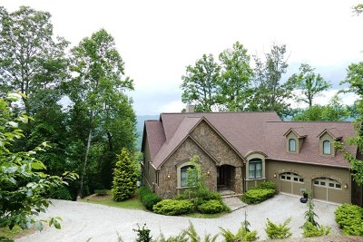 Franklin NC Single Family Home For Sale: $595,000