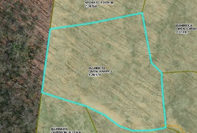 Franklin Residential Lots & Land For Sale: 00 Garden Branch Road