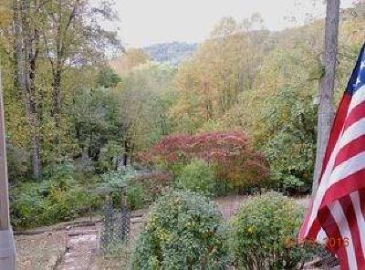 Franklin Single Family Home For Sale: 63 Mountain Air