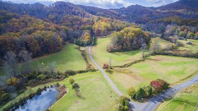 Franklin, Otto Single Family Home For Sale: 217 Rozeta Gap Drive