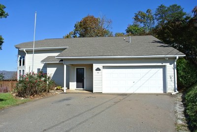 Franklin NC Single Family Home For Sale: $210,000