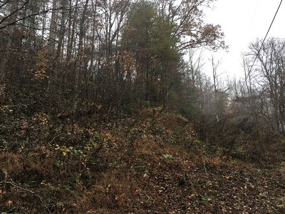 Franklin, Otto Residential Lots & Land For Sale: N/A Laurel Falls Rd