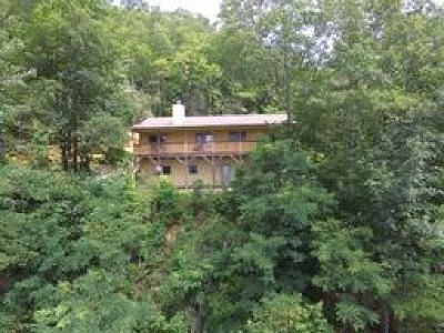 Single Family Home For Sale: 682 Coon Creek