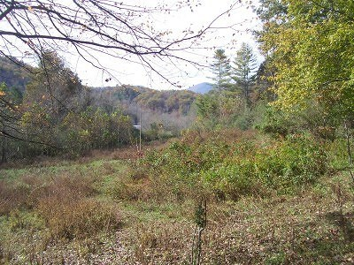 Franklin, Otto Residential Lots & Land For Sale: 00 Olive Hill Road