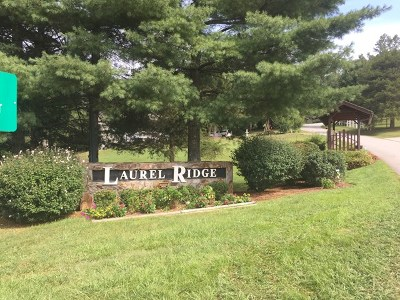 Franklin, Otto Residential Lots & Land For Sale: N/A Placid View