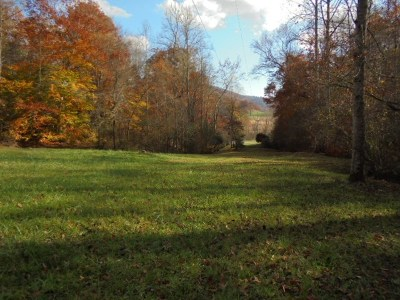 Franklin, Otto Residential Lots & Land For Sale: 00 Wayah Road
