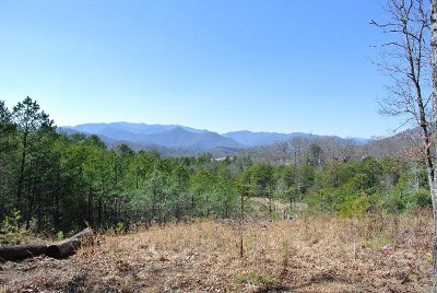 Franklin, Otto Residential Lots & Land For Sale: 00 Jim Deal Road