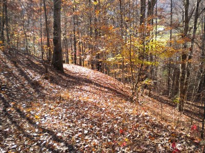 Franklin, Otto Residential Lots & Land For Sale: 11 Woodcrest Cr