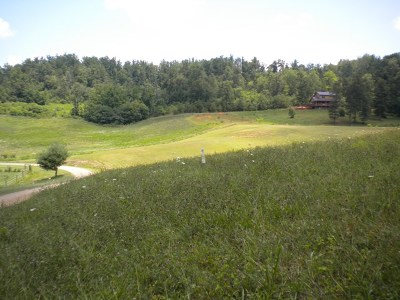 Franklin, Otto Residential Lots & Land For Sale: 00 Fred Dalton Road