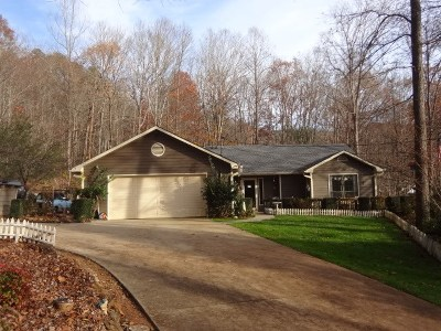 Single Family Home For Sale: 445 Beasley Mine Road