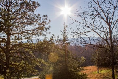 Franklin, Otto Residential Lots & Land For Sale: Lot 7 Sawyer Cove