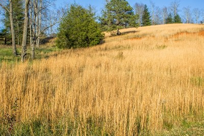 Franklin, Otto Residential Lots & Land For Sale: Lot 8 Autumn Trail