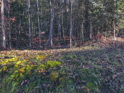Franklin, Otto Residential Lots & Land For Sale: 000 Country Road