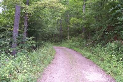 Franklin, Otto Residential Lots & Land For Sale: 00 Hodgins Rd