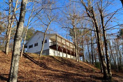 Jackson County Single Family Home For Sale: 110 Sky Ridge Court