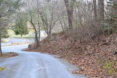 Franklin Residential Lots & Land For Sale: 00 Country Club Drive