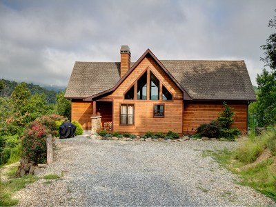 Bryson City Single Family Home For Sale: 133 Lake Cliff Point