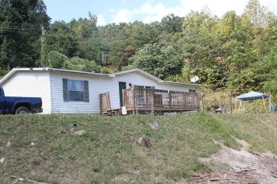 Single Family Home For Sale: 250 Town Mountain Road