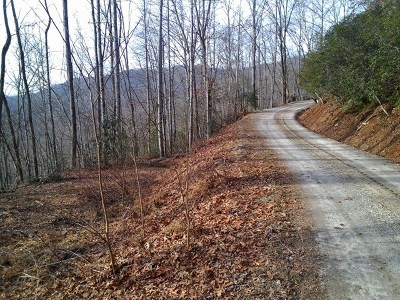 Franklin, Otto Residential Lots & Land For Sale: 00 00 Summit Road